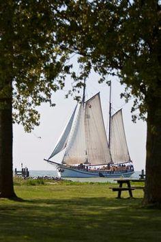 Zeilcharterschip Succes #Zeilcharter #zeilen #zeilschip #boot Dutch Barge, Tall Ships, Sailboats, Paddle, Sailing Ships, Pirates, Holland, Sailor, Nautical