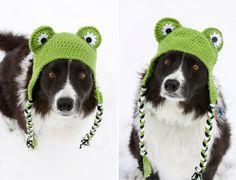 snow hat = cutest border collie ever!