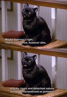 I love Salem. (Sabrina, the teenage Witch)
