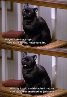 I love Salem. (Sabrina, the teenage Witch)