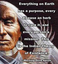 Everything on Earth has a purpose, every disease an herb to cure it, and every person a mission.  This is the Indian theory of existence.
