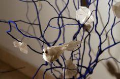 whitey's nest