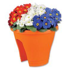 Oranje bloemetje in plantenbak ideaal voor balkon reling. Speciale oranje uitvoering. Oranje bloemen voor elke oranje fan.