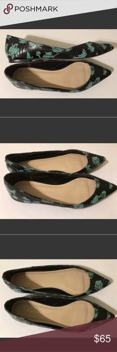 Women's Loeffler Randall Flats Dress Casual Shoes, This pre owned pair of gorgeous flats are in excellent condition. They have been very well taken care of as seen in the photos. They are black and a sea foam/turquoise color. No defects besides some normal wear on the bottom of the shoes. Loeffler Randall Shoes Flats & Loafers