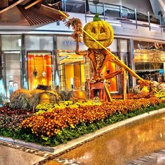 #LOVE My Facebook page: https://www.facebook.com/MrOgdenGeorge/  #GeorgeOgden #MyPhotography Scarecrow at the Las Vegas mall!