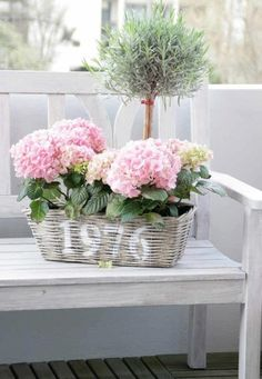 <3 Beautiful Garden Flowers