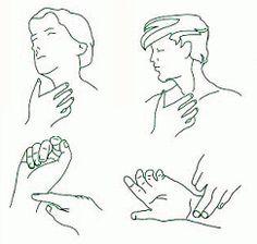 Zonas donde medir el pulso.   APUNTES AUXILIAR ENFERMERIA