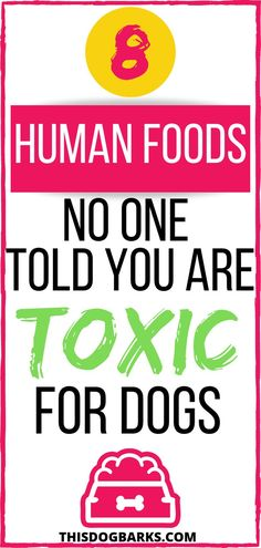 Are you feeding your dog any of these human foods that are actually toxic foods for dogs? Find out if you might unknowingly be putting your pet at risk with this list of poisonous foods for dogs. You might be surprised at which foods dogs can't eat! Easy Dog Treat Recipes, Dog Food Recipes, Toxic Foods For Dogs, Cheap Pet Insurance, Dog Diet, Best Dog Food, Dog Care Tips, Dog Eating, Homemade Dog Food
