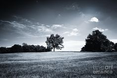 Hilly Black White Landscape Photograph by Jan Brons. Hilly landscape with trees and vegetation and a juicy grass meadow. A cloudscape with sun rays that get blocked by clouds.     Photo is in Black and White.