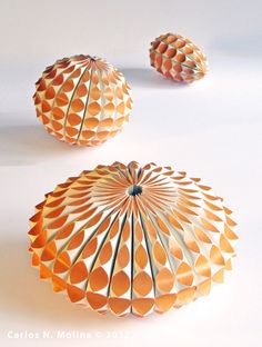 Paper Forms - Gourds/Sea Creatures  By Carlos N Molina