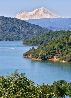 Lake Shasta I miss this lake-used to go fishing with my Dad, one of many places. #freshwater #bass
