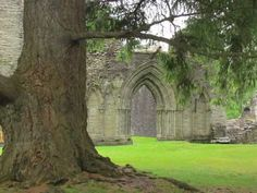 Inchmahome Priory, Scotland Purple Books, Mary Queen Of Scots, Scotland, Places, Projects, Travel, Log Projects, Voyage, Viajes