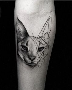 Kamil Mokot cat tattoo