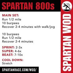 Spartan 800
