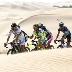Peter Sagan and the pack are on the way of Abu Dhabi Tour. picture ClaudioPeri