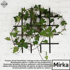 meble - inne-KWIETNIK Mirka