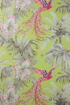 Bird of Paradise Wallpaper & Fabric From Osborne & Little.