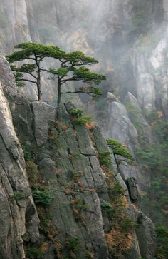 Huangshan Mountains, Anhui Province, China