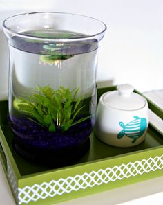 Cute! I've been wanting to get a Beta fish, lately. The tray and fish food canister are cute ideas. It'll be my treat when we find, buy, and get moved into a house?