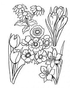 Blumen 42 Ausmalbilder