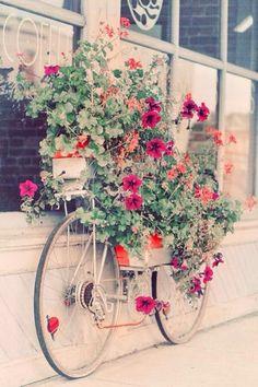 Decoração de flores em bicicletas. #charme no #jardim de #casa #flores #plantas…