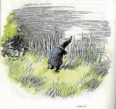 Image result for the wind in the willows illustrations