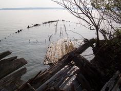 The Mallows Bay Ghost Fleet - The Western Hemispheres Largest Ship Graveyard http://www.dnr.state.md.us/naturalresource/winter2001/ghostship.html