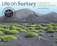 Life on Surtsey: Iceland's Upstart Island. By Loree Griffin Burns. Chronicles the scientific study of life on Surtsey, an island created by a volcanic eruption in allowing scientists to examine how life survives on a sterile island. Fly To Iceland, Teaching Critical Thinking, Iceland Island, Houghton Mifflin Harcourt, Life Form, Book Of Life, Nonfiction Books, Day Trip, Under The Sea