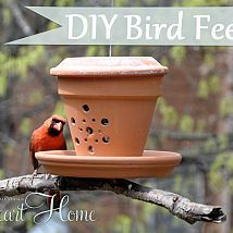 How about a fun spring project thats a gift to your little feathered… :: Hometalk