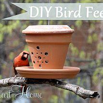 Turn a terra cotta pot into a bird feeder!