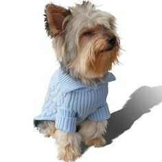 Stinky G Baby Blue Dog Aran Sweater * Click image for more details. (This is an affiliate link) #PetDogs