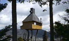 Fujimori's tree teahouse in Nagano.