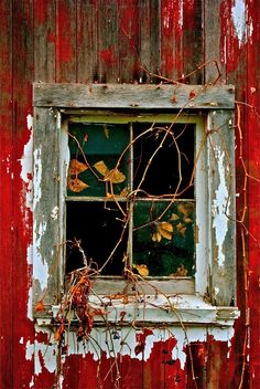 old window on red wall
