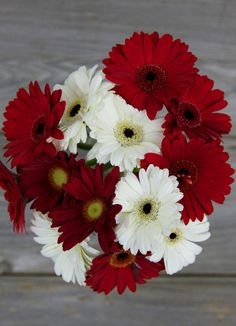 Red & White Gerbera Daisy Bouquet
