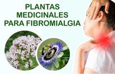 Fibromyalgia, Doterra, Diabetes, Medicine, Health, Nature, Food, Gardens, Rheumatoid Arthritis
