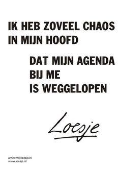 """""""**er is zoveel chaos in mijn hoofd . . dat mijn agenda bij me is weggelopen** #loesje #maandag"""""""