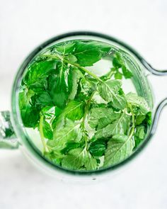 Easy Mint Water Recipe – A Couple Cooks Best Healthy Cookbooks, Healthy Cook Books, Mint Recipes, Water Recipes, Sugar Free Vegan, Dairy Free, Healthy Drinks, Healthy Recipes, Mint Water