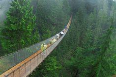 Capilano Suspension Bridge, Canada - Rich Wheater/Aurora Photos/Corbis