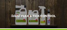 Shop Natural Flea & Tick Control