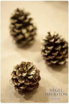 Gold Painted Pinecones