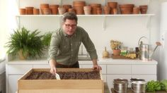 Learn & Do: Planting a Lettuce Garden Videos | Tv How to's and ideas | Martha Stewart