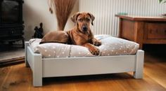 Shropshire Wooden Dog Bed