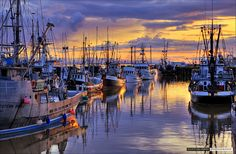 Steveston Harbour Sunset by Clayton Perry Photoworks, via Flickr
