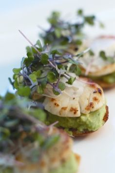 Pan Seared Sea Scallops & Minted Pea Purée Crostini