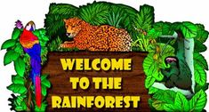 Rainforest @ lilteacher.com