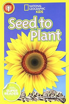 National Geographic Readers: Seed to Plant by Kristin Baird Rattini http://www.amazon.com/dp/1426314701/ref=cm_sw_r_pi_dp_2JG-vb116VE5M