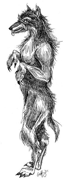 Beast of Bray Road, manwolf, dogman - called by different names, this upright canine creature has been sighted by many people. Drawing by Linda Godfrey