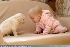 omg i love babies AND puppies!