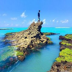 Alagoas   Ƹ̵̡Ӝ̵̨̄Ʒ • Må®¢ë££å™ • Ƹ̵̡Ӝ̵̨̄Ʒ