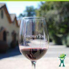 Concha y Toro é uma empresa chilena, produtora e exportadora de vinhos. Foi fundada em 1883 por Don Melchor de Concha y Toro. É a maior vinícola do Chile e possui vinhedos nos principais vales produtores chilenos, bem como na Argentina. Um de seus vinhos mais conhecidos é o Casillero del Diablo.